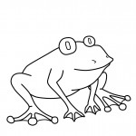 Printable Frog Coloring Page Pictures