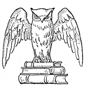 printable owl coloring page pictures  animal place