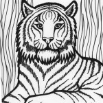 Printable Tiger Coloring Page Photos