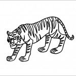 Printable Tiger Coloring Page Pictures