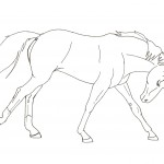 Running Horse Coloring Pages Photo
