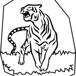 Tiger Coloring Page Images