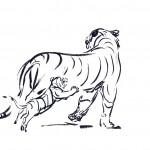 Tiger Coloring Page for Kids Images