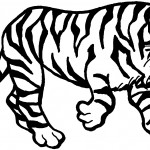 Tiger Coloring Page for Kids Photo