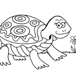 Turtle Coloring Page Picture