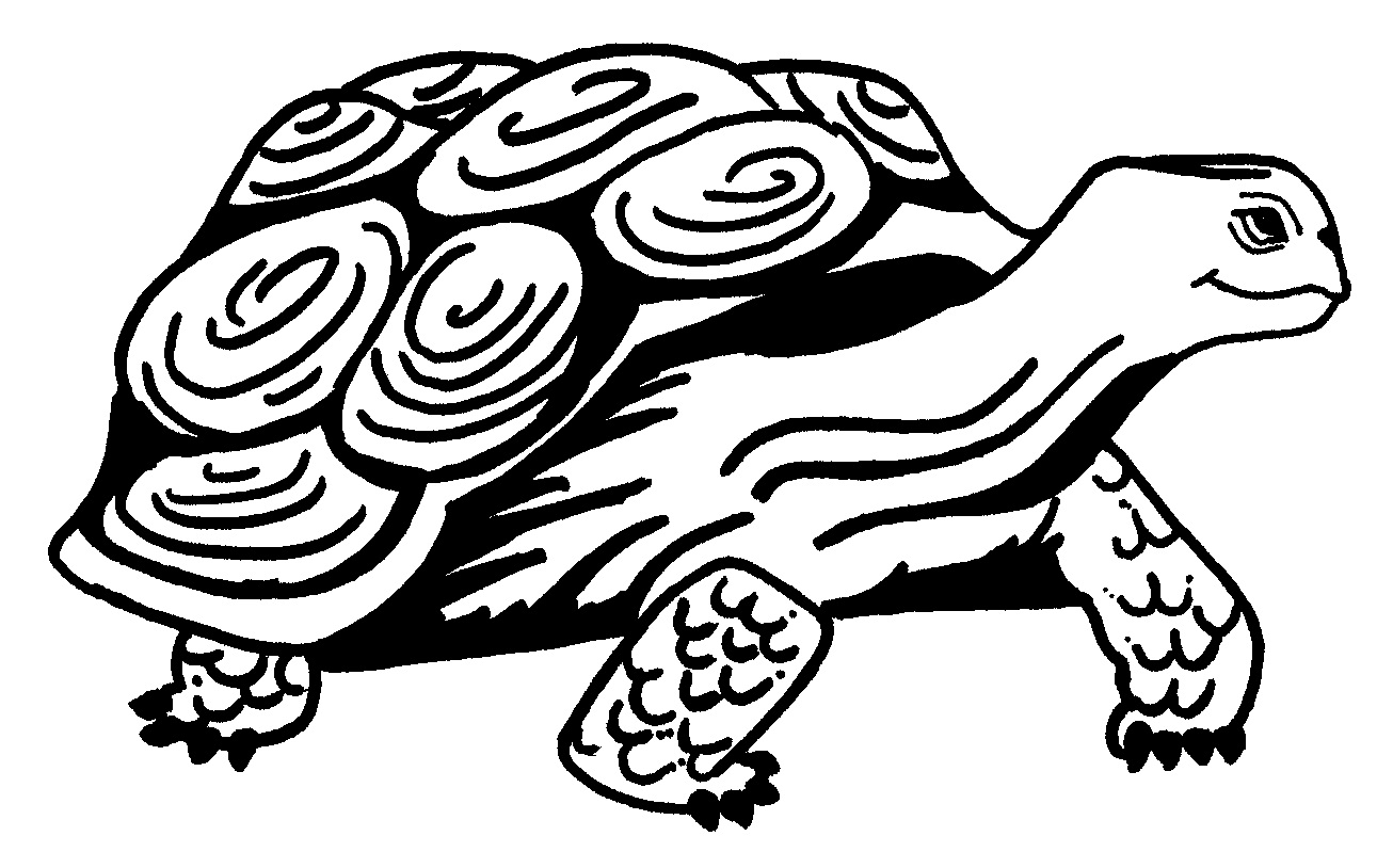 free printable turtle coloring pages for kids animal place