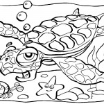 Turtle Coloring Pages for Kids Image