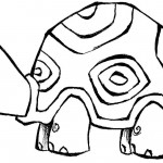 Turtle Coloring Pages for Kids Photo