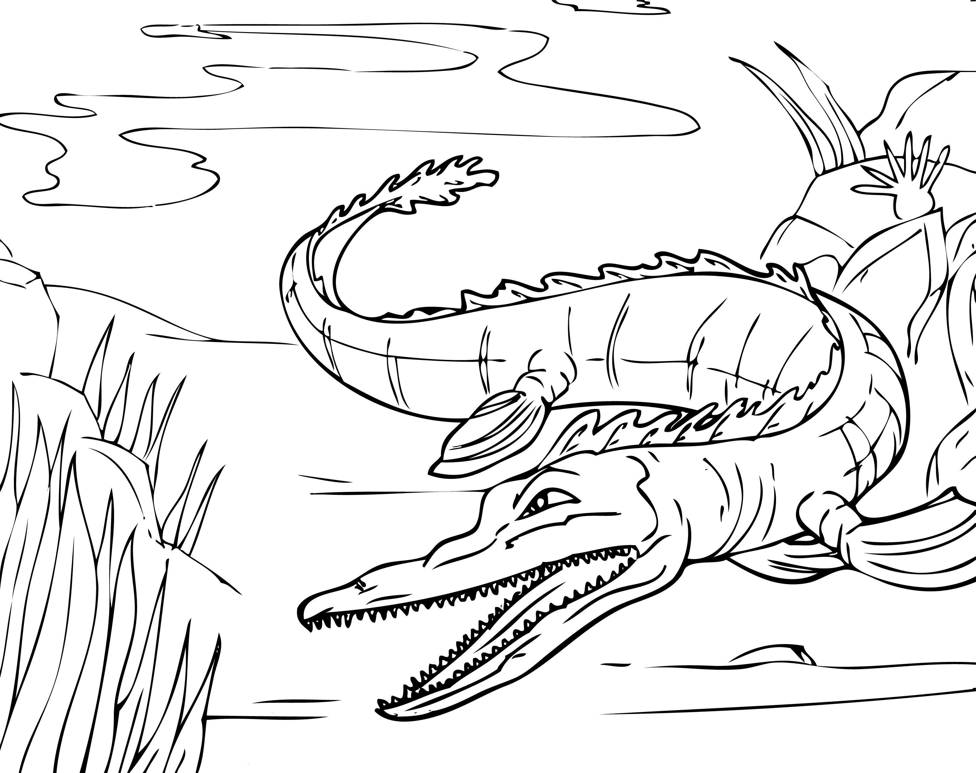 Free coloring pages alligator - Free Printable Alligator Coloring Pages For Kids