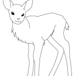 Baby Deer Coloring Pages Picture