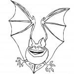 Bat Coloring Page Image