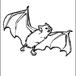 Bat Coloring Page Pictures