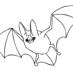 Bat Coloring Page for Kids Image