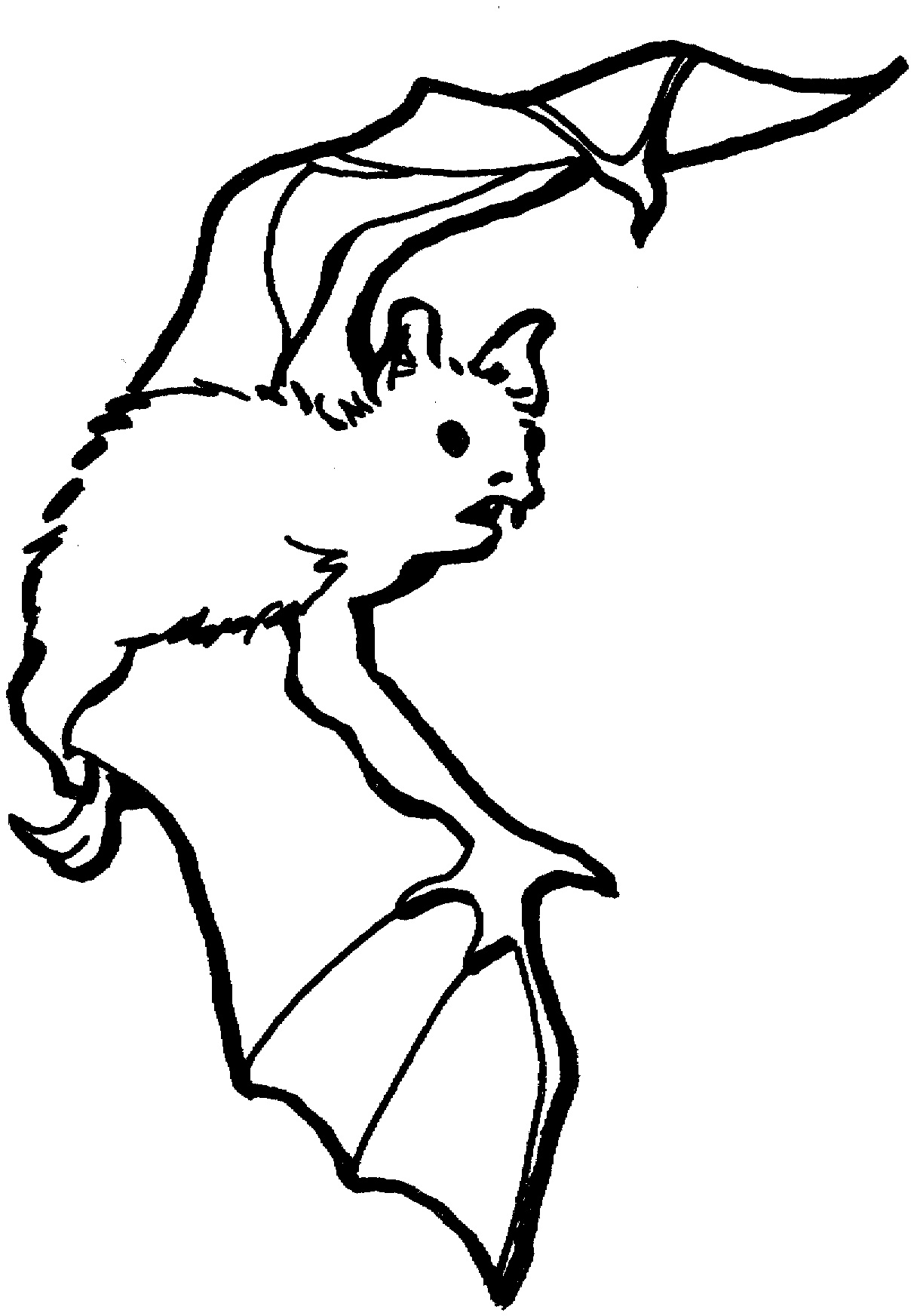 Free Printable Bat Coloring Pages For Kids Animal Place