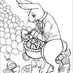 Bunny Rabbit Coloring Page Picture