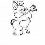 Bunny Rabbit Coloring Pages Pictures