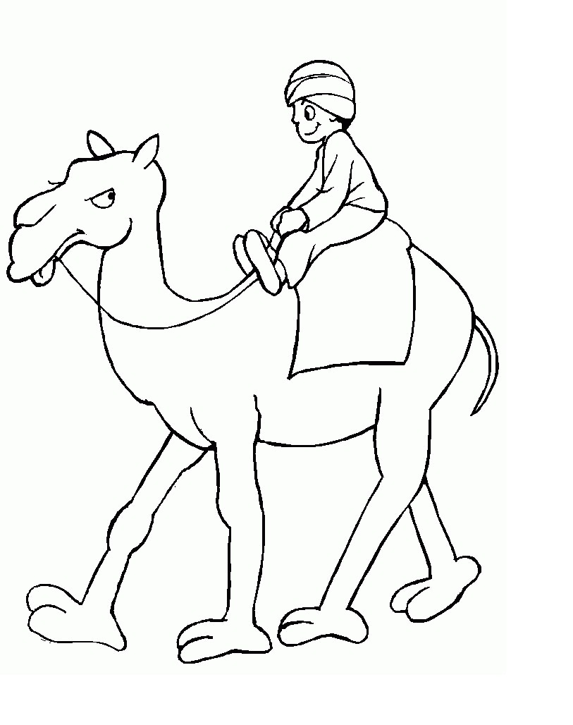 Free coloring pages camel - Camel Coloring Page Images