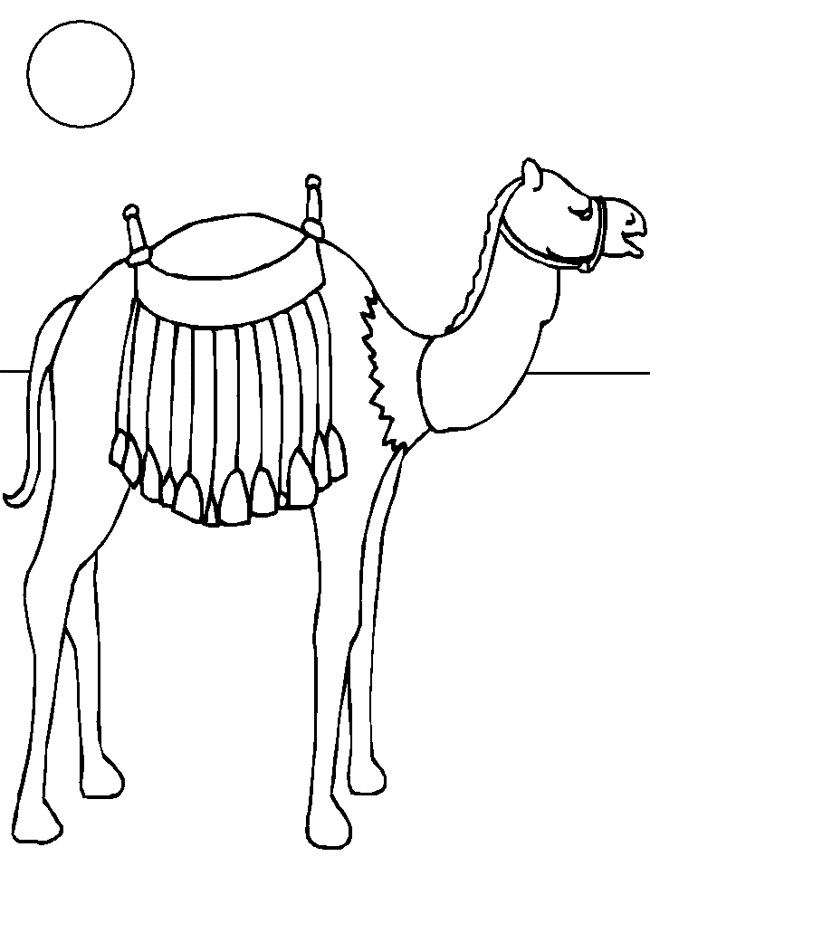 camel coloring pages for kids - photo#28
