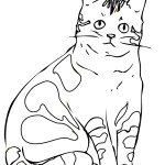 Cat Coloring Page Images