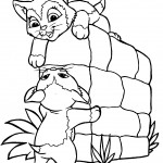 Cat Coloring Page Photo