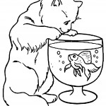 Cat Coloring Page Pictures