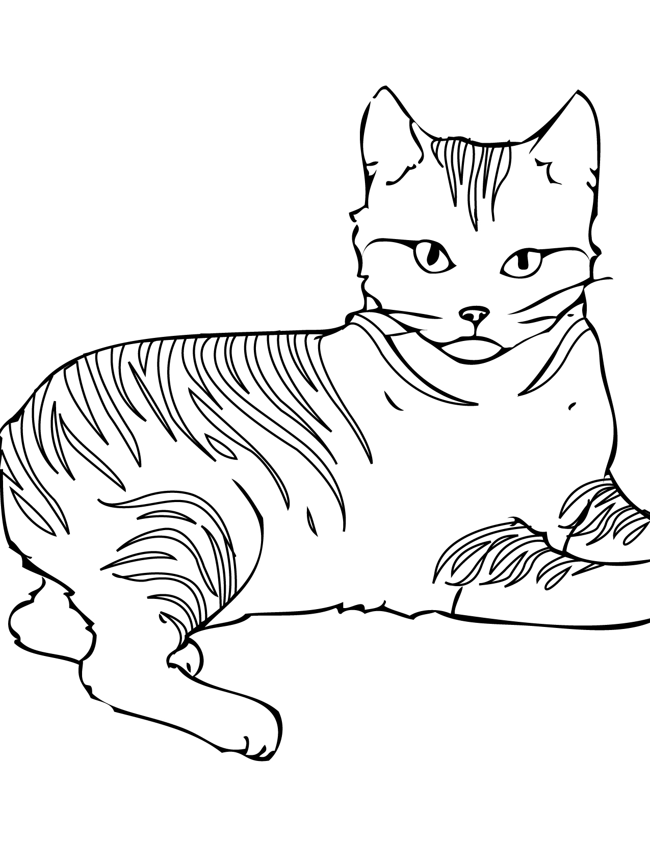cat coloring sheets to print coloring pages