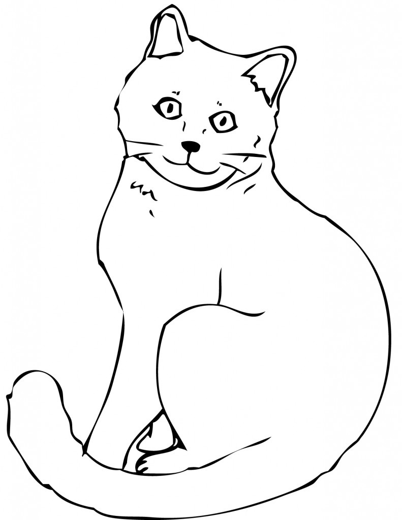 Cat Coloring Page for Kids Photos - Animal Place