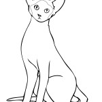 Cat Coloring Page for Kids Pictures