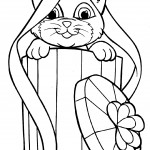 Cat Coloring Pages for Kids Photos