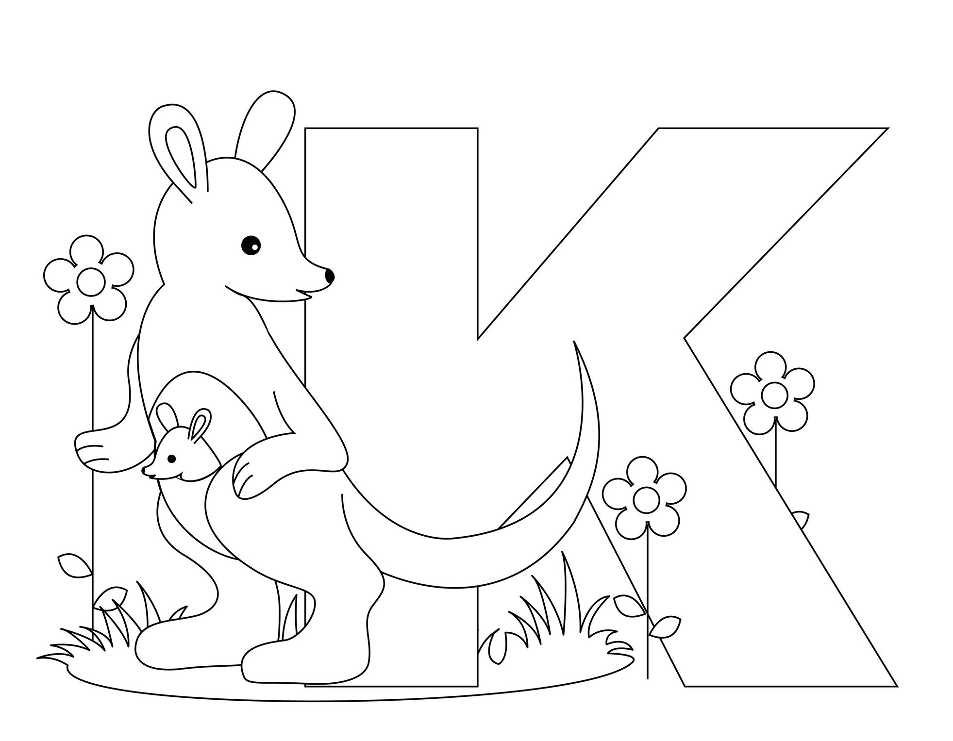 Free coloring pages kangaroo - Coloring Page Kangaroo Images