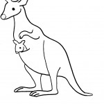 Coloring Page Kangaroo Picture