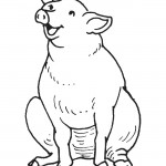 Coloring Page Pig Pictures