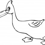 Coloring Page of Duck Image