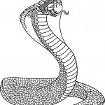 Coloring Page of Snake Image