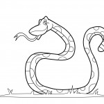 Coloring Page of Snake Images