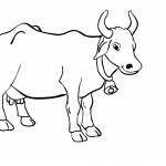 Coloring Pages Cow Image