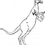 Coloring Pages Kangaroo