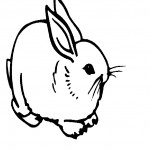 Coloring Pages Rabbit Picture