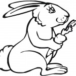 Coloring Pages Rabbit Pictures