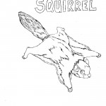 Coloring Pages Squirrel Photos