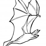Coloring Pages of Bat