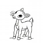 Coloring Pages of Deer Images
