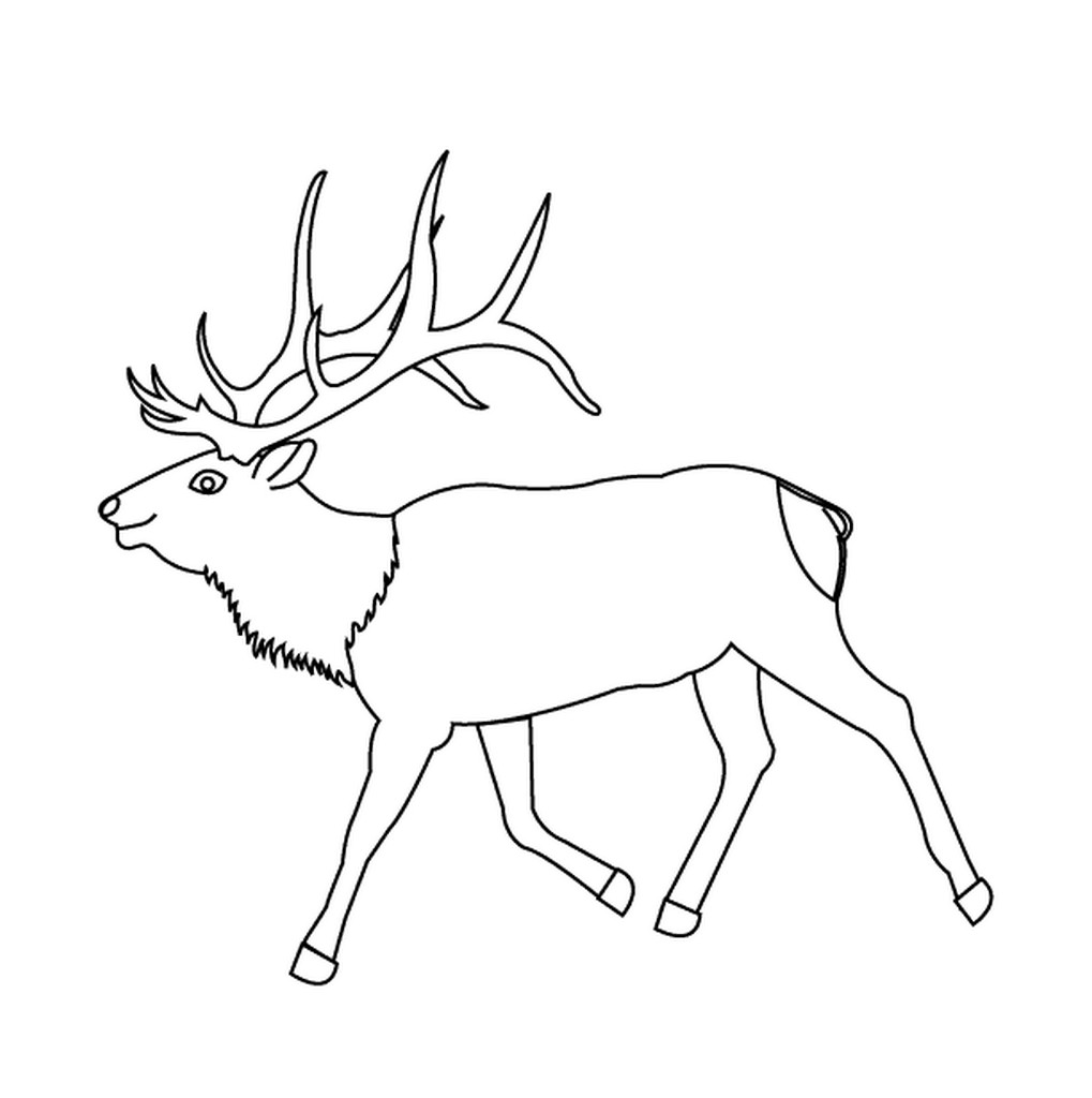 Free printable deer coloring pages for kids animal place for Deer coloring pages for kids