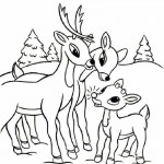 Coloring Pages of Deer Pictures