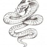 Coloring Pages of Snake Picture