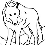 Coloring Pages of Wolf Images