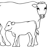 Cow Coloring Page Photo