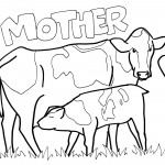 Cow Coloring Page Picture