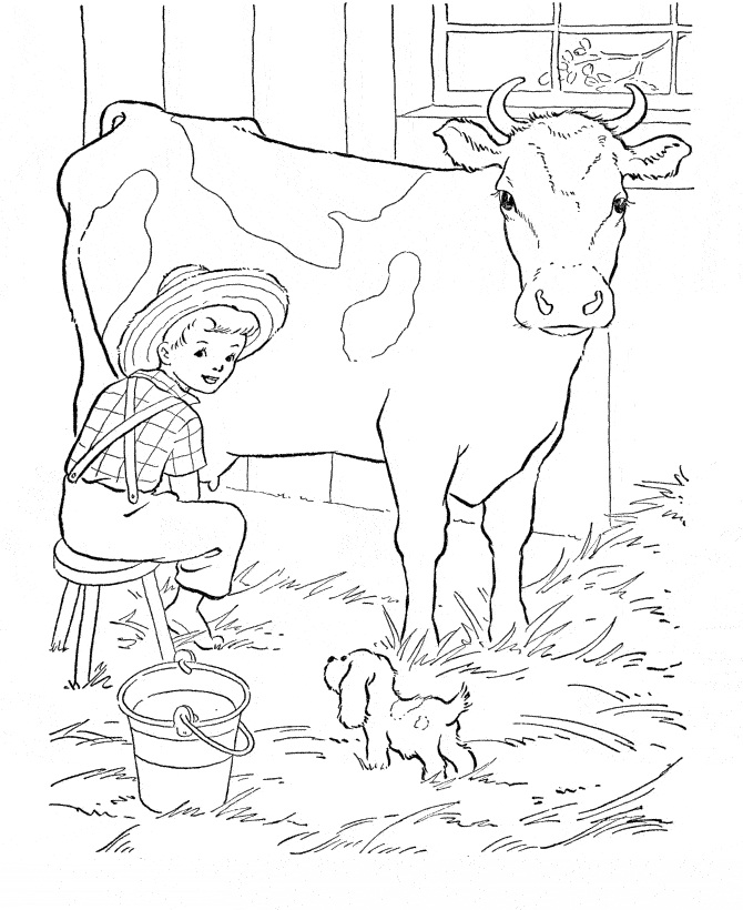 Cow Coloring Pictures Apigramcom