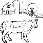 Cow Coloring Pages Photos